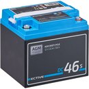 ECTIVE DC 46S AGM Deep Cycle mit LCD-Anzeige 46Ah...